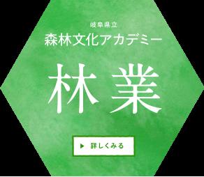 岐阜県立森林文化アカデミー