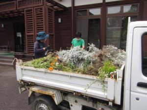 植物ゴミ(残渣)を軽トラックに積む