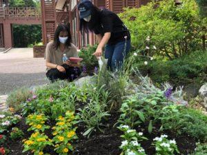 卒業制作庭園の管理指導