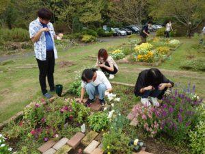 試験花材を収穫する学生ら