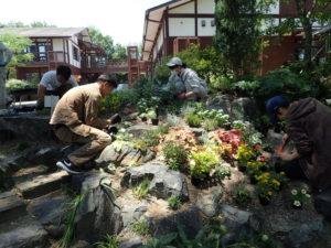 自然風花壇植替