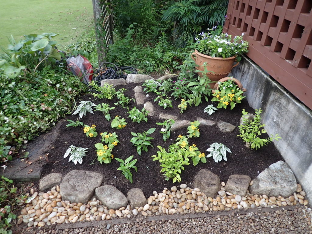 玄関前小花壇