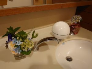 トイレに飾られた花