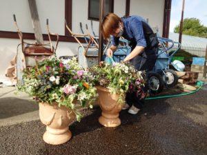 完成した寄せ植えに水をやる学生