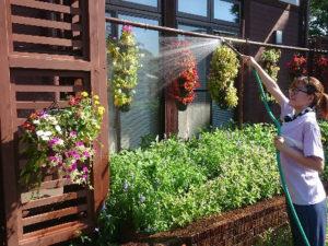 花壇と釣り鉢(立体花壇)への散水