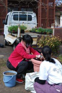 寄せ植え制作のアシスタントをする学生