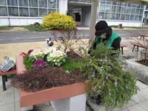 花がら摘みなど他の植物も管理
