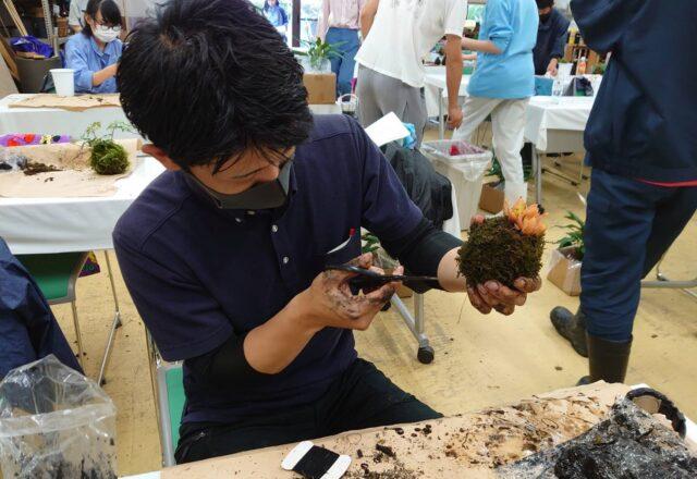苔玉を制作する学生