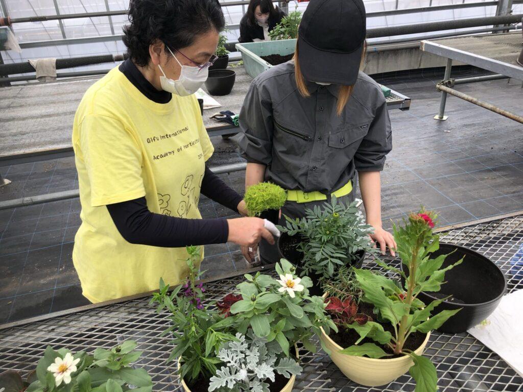 植物の組み合わせをアドバイス
