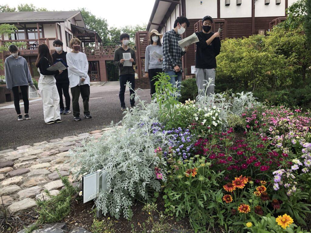 庭園の管理方法指導