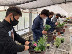 寄せ植えを制作する学生ら