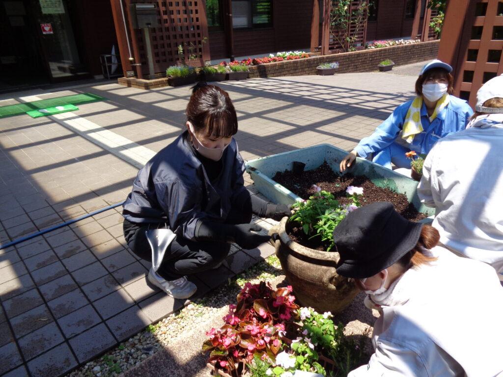 学内花壇植栽